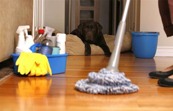 Влажная уборка дома - мытьё пола