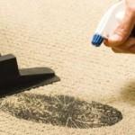 Удаления следа на ковре